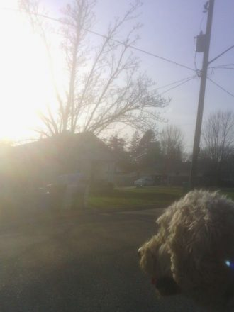sun coming up on doodle